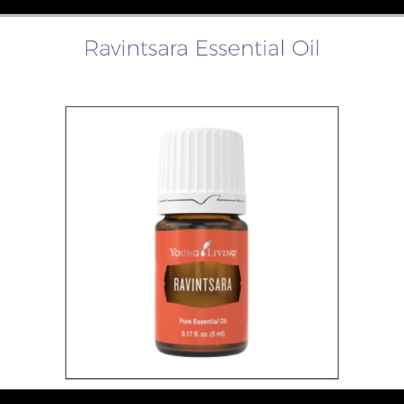 Young Living Ravintsara Essential Oil 5 ml NEW
